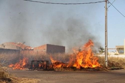 tn_7e5cf08672_imprensa-queimada