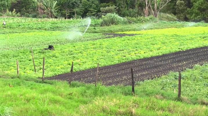 curso-tecnico-agricola2